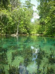 Map Of Ocala Fl Ocala Silver Springs State Park Ocala Florida Beauty Of