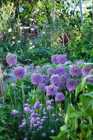 1609 best glimpses of gorgeous gardens images on pinterest