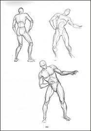 male anatomy poses choice image learn human anatomy image