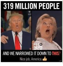 Nice Job Meme - 319 million people pbs and we narrowed it down to this nice job