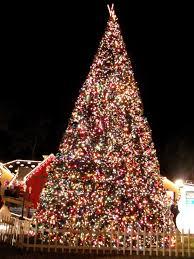 christmas lane spectacular holiday confection tbo com