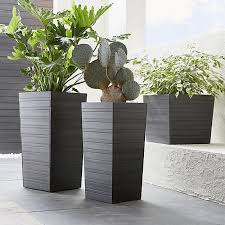 Tall Plastic Planters by 209 Best 125 Sunnyside Images On Pinterest Plants Garden Plants