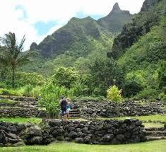 Botanical Gardens Seattle Visiting Botanical Gardens On Kauai The Anything Grows Hawaiian