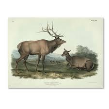 what is best john deere collector plate