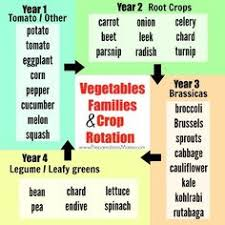 crop rotation 4 bed and 6 bed plans with details of groups