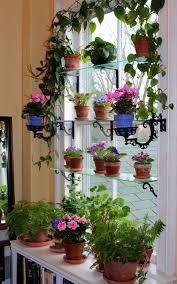 Herb Window Box Indoor Best 25 Indoor Window Garden Ideas On Pinterest Indoor Herbs