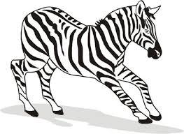 zebra coloring free animal wild zebra coloring sheet
