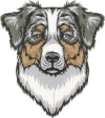 australian shepherd 101 australian shepherd dog breed cross stitch pattern and