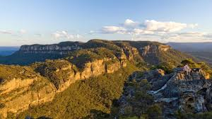 blue mountains native plants blue mountains experiences and attractions tourism australia