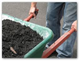 how to fertilize vegetable garden using organic compost