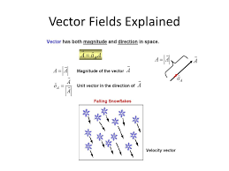 scalar and vector fields ppt video online download