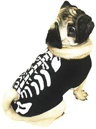 Glow In The Dark Skeleton Costume 56 Best Asda Halloween Costumes Images On Pinterest Halloween