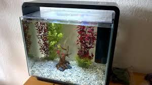 fish tank fascinating aquarium for home photo design fish tank diy