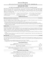 executive resume templates resume marketing sales executive therpgmovie
