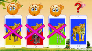 wrong iphones with wild animals wild animals for kids animals