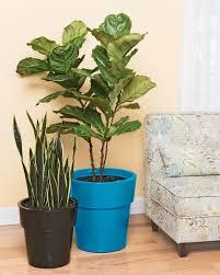 Herb Planter Indoor Sonoma Large Indoor Planter Indoor Flower Pot Gardeners Com