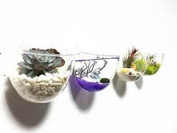 set of 4 empty glass wall bowl vase wall mini fish bowl indoor
