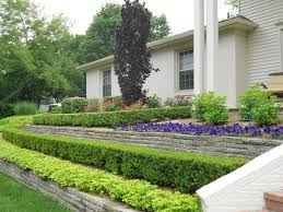 boxwood landscaping design ideas u2014 porch and landscape ideas