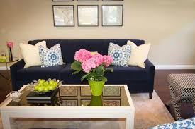 living room cute picture of living room decoration using velvet