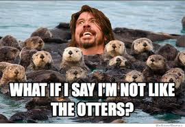 I Say Meme - what if i say im not like the otters weknowmemes