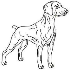 coloring page of a big dog realistic dog coloring pages wallpapers projects to try