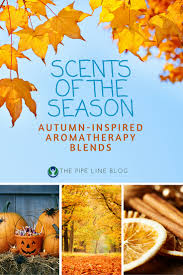the pipe line scents of the season aromatherapy blends the pipe line