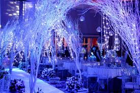 Winter Party Decor - winter party decorations buscar con google invierno pinterest
