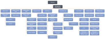 Example Of Introdu Company Orgnizational Chart Introduction And Examples Org Charting