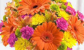 whole sale flowers albuquerque wholesale flowers