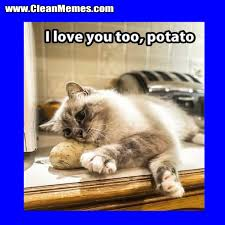 Funny Potato Memes - see potato clean memes the best the most online