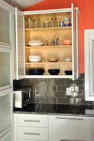 Frameless Wall Cabinet Open Contemporary Kitchen - Wall cabinet kitchen