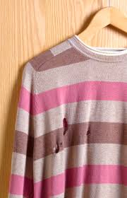 How To Get Rid Of Bugs In Kitchen Cabinets How To Control And Identify Bugs That Eat Clothes