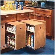great kitchen storage ideas great diy kitchen ideas archives diy crafts you home design