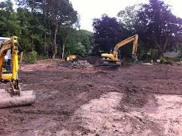 site clearance ash services tree surgery and landscaping