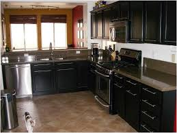 Cabinet Doors Miami Cabinets 75 Most Startling Canadian Kitchen Manufacturers