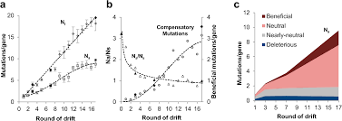 systematic mapping of protein mutational space by prolonged drift