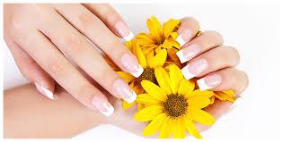 nail salon charlotte nail salon 28278 sami u0026 co salon and nail spa