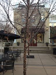 Landscape Lighting St Louis St Louis Permanent Tree Lighting Outdoor Lighting And