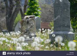 headstone markers headstone markers stock photos headstone markers stock images