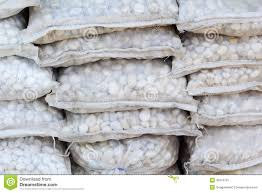 small white stones in a bag for landscaping stock image image