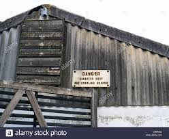 Garage Roofs Roof Stickrpg Us How To Remove Corrugated Asbestos
