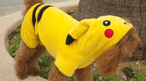 Star Wars Dog Halloween Costumes Star Wars Pokemon List Popular Pet Halloween