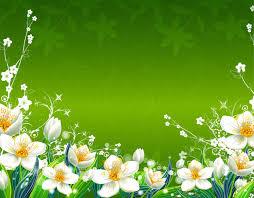 green flowers hd 6 desktop wallpaper hdflowerwallpaper com