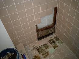 bathroom glass shower door with rain shower and nemo tile wall