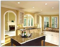 paint colors for kitchen cabinets with white appliances home