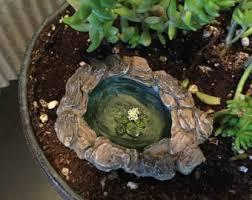 mini terrarium etsy