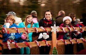 Washington Christmas Tree Farms - coates christmas tree farms in auburn wa kent covington