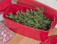 tree storage box trendy plastic tree storage