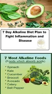 alkaline diet the ultimate guide your essential ph guide with