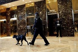 new york live from new york the elevators to trump u0027s residence